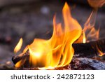 tongues of flame fire close up | Shutterstock . vector #242872123