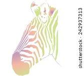 sweet zebra | Shutterstock . vector #242937313