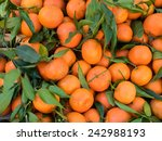 Bunch Of Fresh Clementines Wit...