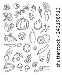 fruit and vegetables hand drawn ... | Shutterstock .eps vector #243198913