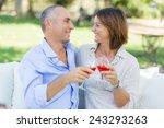 mature couple having an... | Shutterstock . vector #243293263