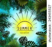 Summer Sun And Palm Trees Fram...