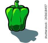cute vector cartoon capsicum... | Shutterstock .eps vector #243618457