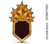 sophisticated vector blazon... | Shutterstock .eps vector #243847483