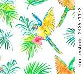 macaw seamless pattern.... | Shutterstock .eps vector #243971173