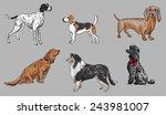 Dogs Set 2