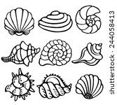 sea shells icon set isolated on ... | Shutterstock .eps vector #244058413