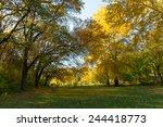 nature of ukraine.  | Shutterstock . vector #244418773