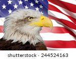 a beautiful bald eagle with a... | Shutterstock . vector #244524163