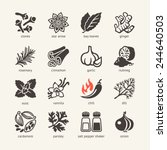 web icon set   spices ... | Shutterstock .eps vector #244640503