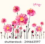 watercolor bright asters 4   Shutterstock . vector #244663597