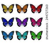 colorful butterfly upper wing... | Shutterstock . vector #244727263