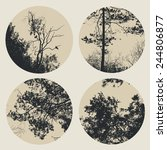 set of circles with trees and... | Shutterstock .eps vector #244806877