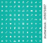 100 fitness icons  white on... | Shutterstock .eps vector #245073307