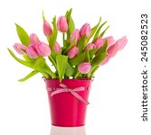 Pink And White Tulips In Bucke...