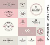 set of flat design icons for... | Shutterstock .eps vector #245174953