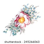 a vector painted watercolor... | Shutterstock .eps vector #245266063