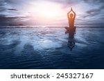 well being concept  beautiful... | Shutterstock . vector #245327167