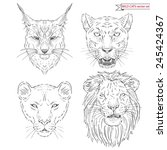 Hand Drawn Animal Set Of Big...