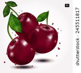 bright berries ripe cherry with ... | Shutterstock .eps vector #245511817