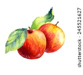 watercolor fruit apple  on... | Shutterstock . vector #245521627