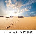 sand desert  | Shutterstock . vector #245521837