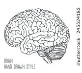 brain   hand drawn style | Shutterstock .eps vector #245524183