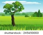 landscape with meadow and trees | Shutterstock . vector #245650003