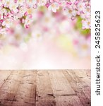 spring abstract background with ... | Shutterstock . vector #245825623