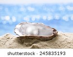 Pearl Oyster In The Sand....