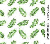 watercolor seamless pattern... | Shutterstock . vector #245929663