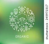 vector organic logo   outline... | Shutterstock .eps vector #245972317