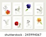 hand drawn collection of... | Shutterstock .eps vector #245994067