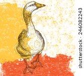 Curious Goose Sketchy Goose...