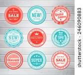 vintage labels template set.... | Shutterstock .eps vector #246090883