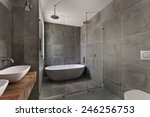 modern bathroom in luxury...   Shutterstock . vector #246256753