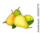 pears vector illustration   Shutterstock .eps vector #246356773