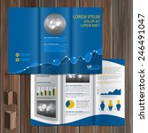 financial brochure template... | Shutterstock .eps vector #246491047