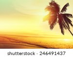 sunset at a tropical beach in... | Shutterstock . vector #246491437