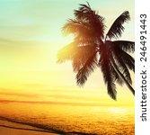sunset at a tropical beach in... | Shutterstock . vector #246491443