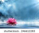 spirituality zen in peaceful... | Shutterstock . vector #246612283