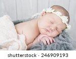 newborn baby sleeping on a... | Shutterstock . vector #246909193