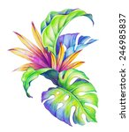 Abstract Tropical Leaves And...