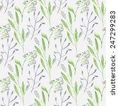 watercolor branch flower... | Shutterstock .eps vector #247299283