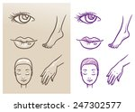beauty cosmetic icon set  eye ... | Shutterstock .eps vector #247302577