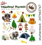 animal woodland camping vector... | Shutterstock .eps vector #247463767