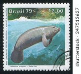 Small photo of BRAZIL - CIRCA 1979: stamp printed by Brazil, shows Amazon manatee, circa 1979