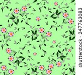 seamless floral vector pattern... | Shutterstock .eps vector #247763083