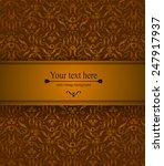 elegant vintage card  flyer ... | Shutterstock .eps vector #247917937