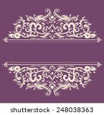 invitation card line drawing... | Shutterstock .eps vector #248038363